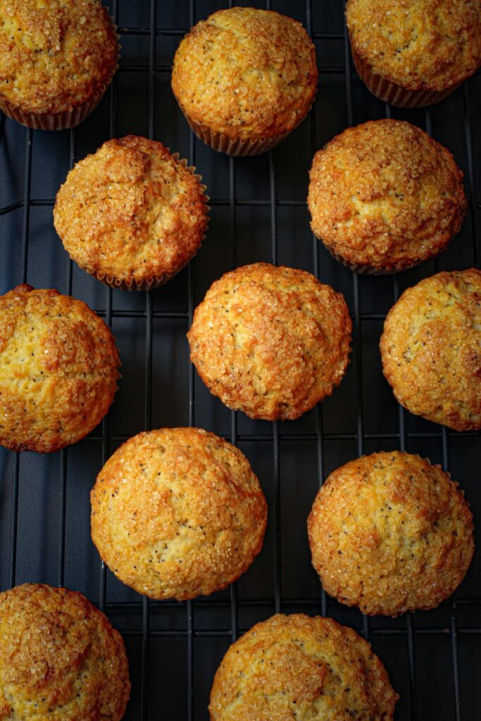 golden lemon poppy seed muffins cooling on a wire rack.
