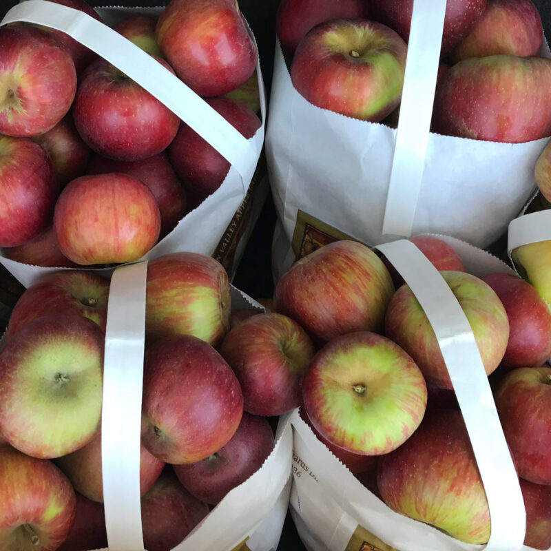bags of apples fresh from the orchard.